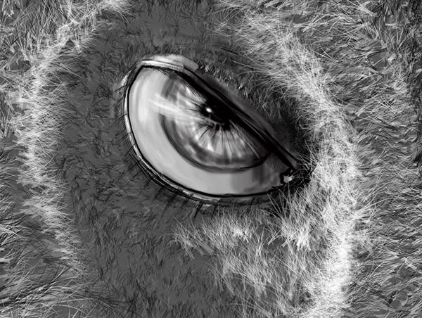 Eye Dog / personal sketch