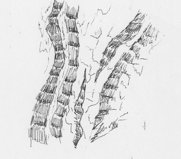 fabric  print Tree  bark stamp sketch Nature