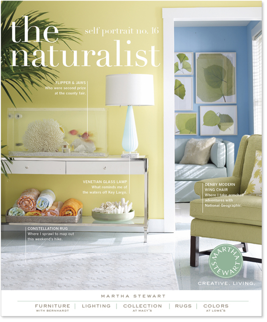 Martha stewart home decorating ad campaign on behance for Martha stewart home decor