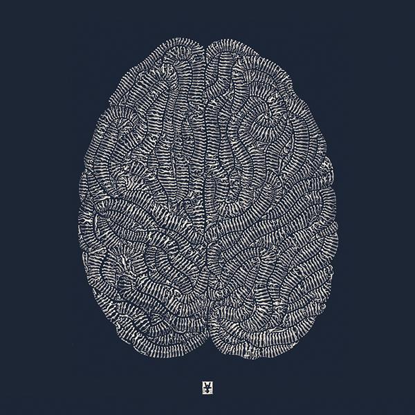 brain little dudes Wittner thousand
