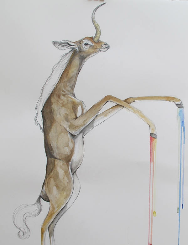 hybrids animals watercolor Paintings social network Mutations sloth goat bat jackalope