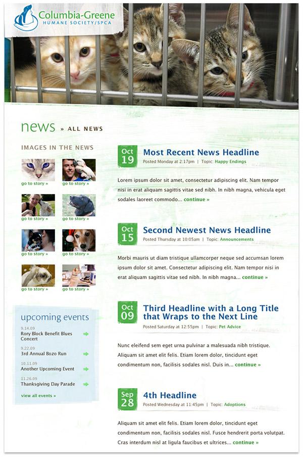 Humane Society website redesign form design blog design