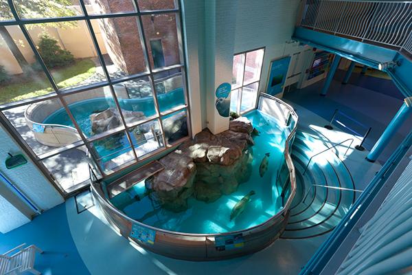 The Maritime Aquarium Norwalk Ct Exhibits On Risd