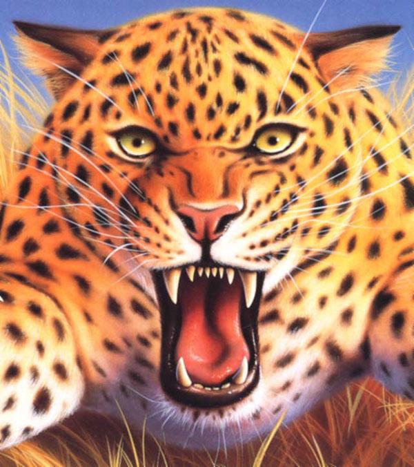Chester Cheetah Illustrations On Behance: Artist Profile: Jerry LoFaro On Pantone Canvas Gallery