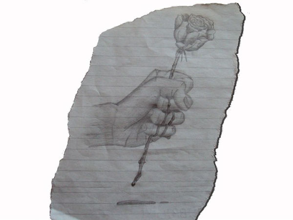 My drawings on behance for Hand holding a rose drawing