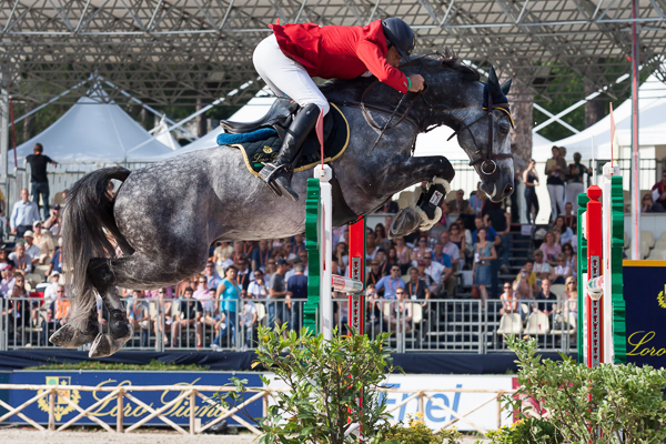 sport Sport Photography Show jumping horses