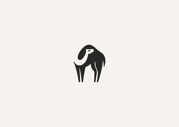 George Bokhua - Création Logo Camel
