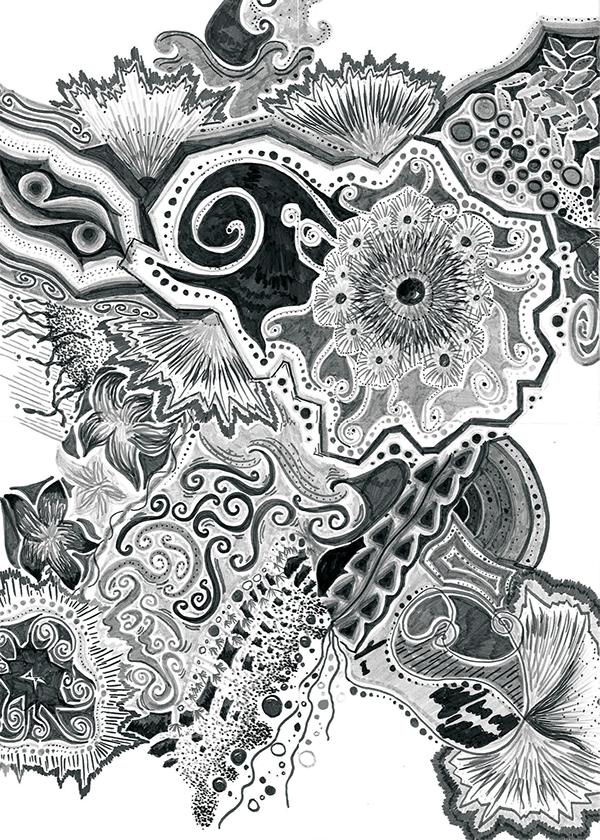 Abstract Life Drawing Old Fashion Sea Life