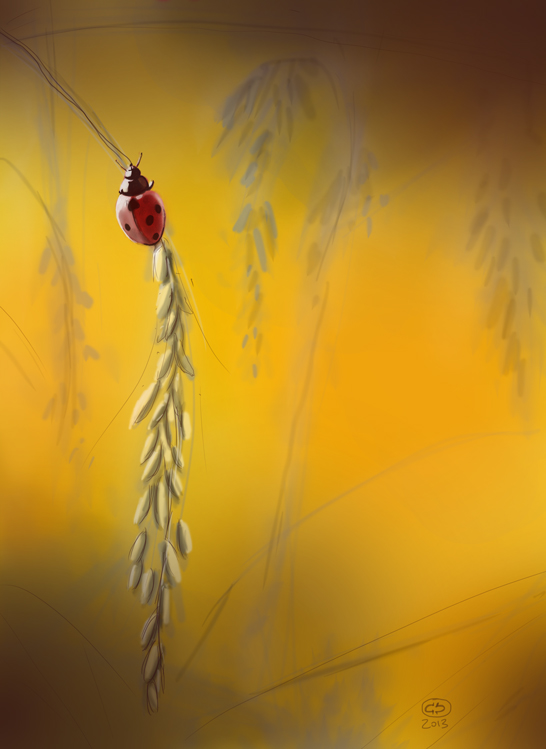 digital painting coccinelle Cox