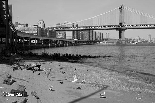 Piano piano on shore East River Atlantic Ocean Ocean piano mystery