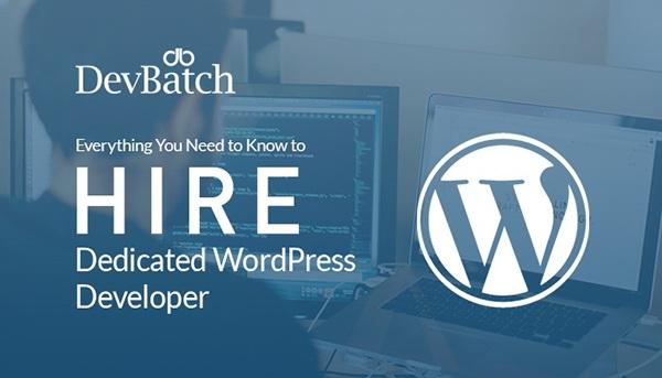 hire dedicated wordpress developer on Behance