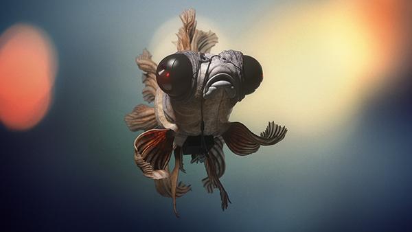 Fish Eye by Pedro Pereira