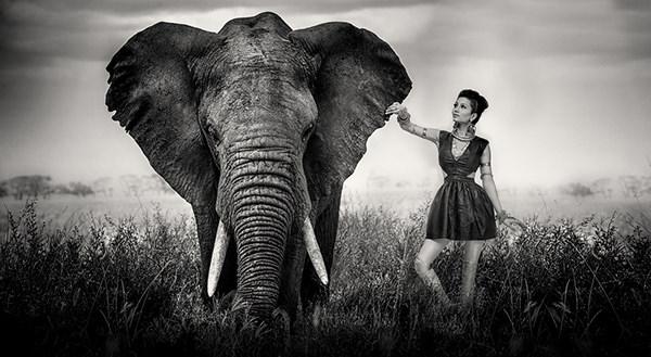 Bal Deo Ericka Virk fashion photography fashion style