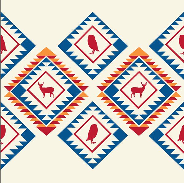 Navajo On Pantone Canvas Gallery
