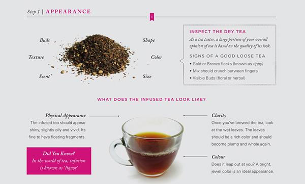 tea tasting magazine spread SPD