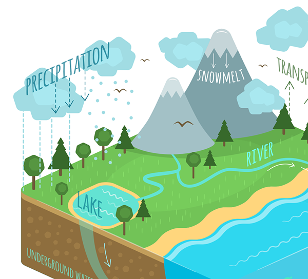 Water cycle diagram on student show water cycle diagram ccuart Image collections