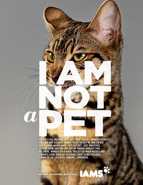 Copy Cat Best Friends