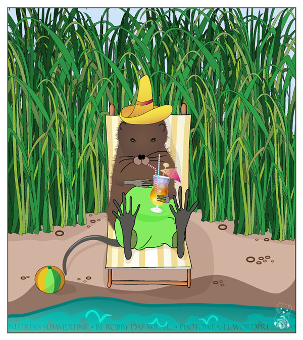 Illustration of a Muskrat sitting on a beach chair, drinking a cocktail and wearing a sun hat.