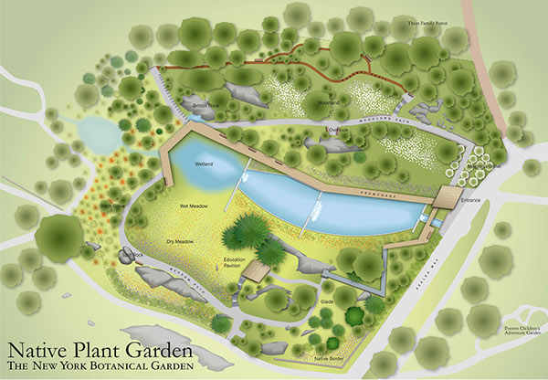 Ordinaire New York Botanical Garden Native Plant Garden Map. Cu0026G Partners LLC 2013
