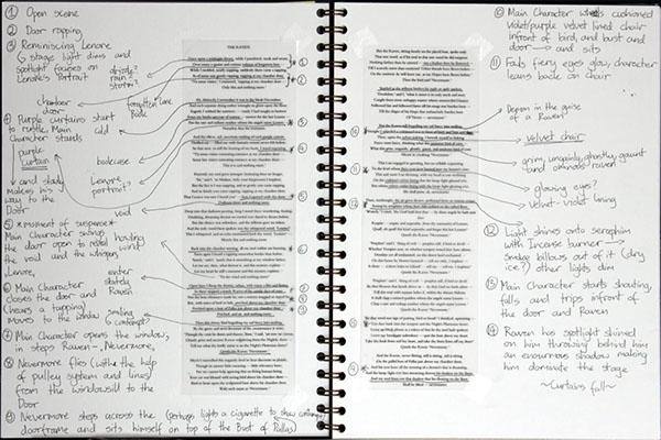 The Raven essay help?