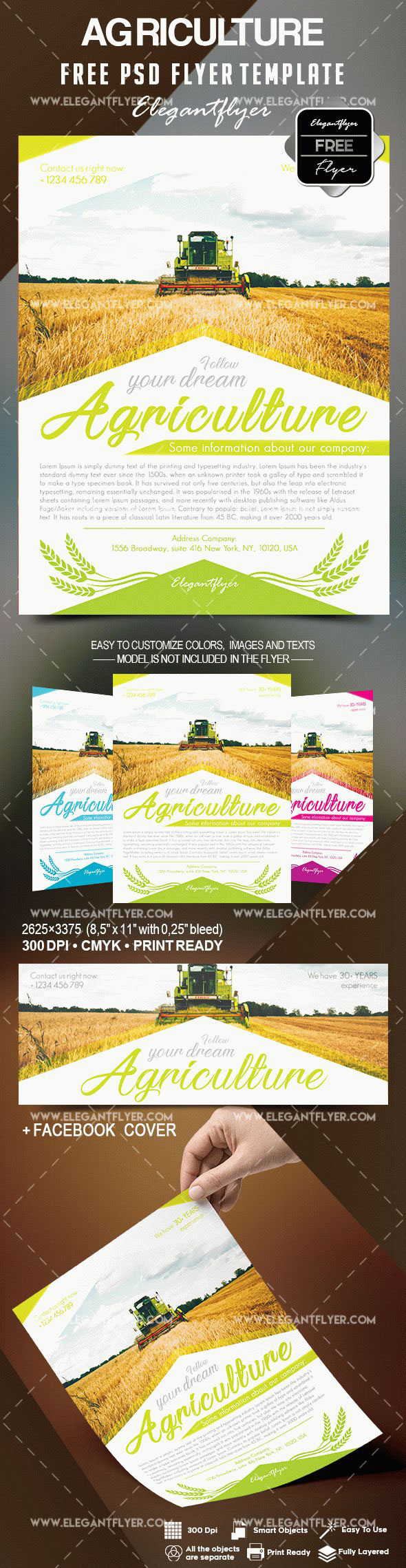 free agriculture flyer templates on behance - Agriculture Brochure Templates Free