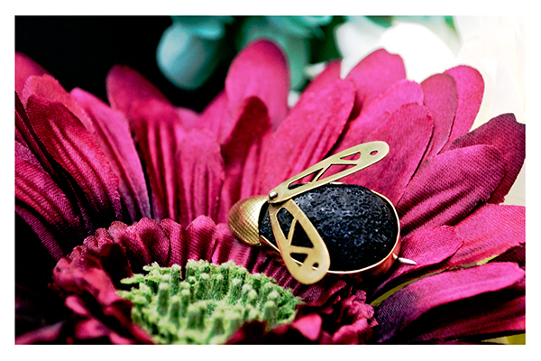 Jewellery Jewellery design bugs brooches brass silver contemporary hand made pumice stone