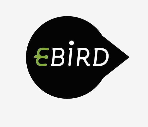 eBird bird Fly Environnement protection logo design minimalist head green black White birdy
