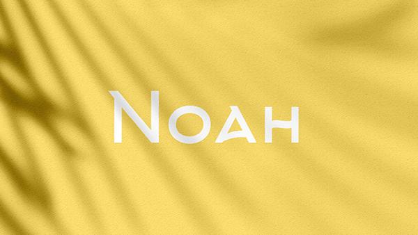 Noah Branding Experience Agency