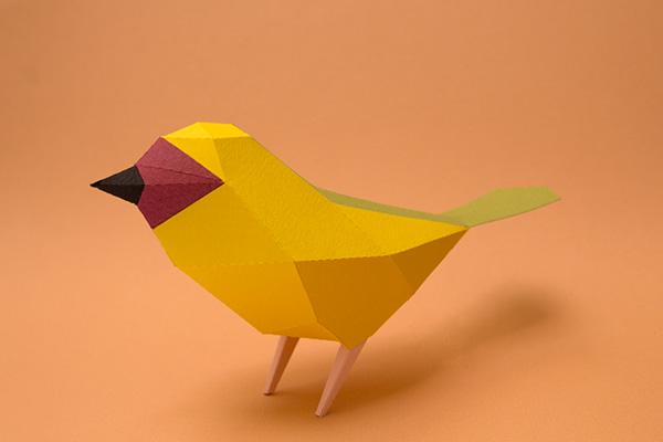 Arabian birds at kaust on behance - Animaux en papier 3d ...
