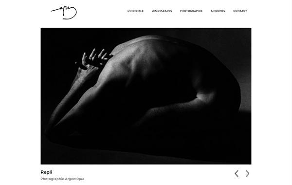 painter photographer wordpress masonry   Web