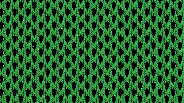 Leap Pattern