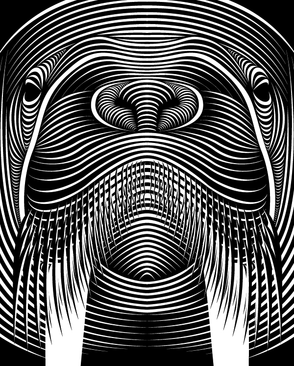 Line Drawing Illusion : Faces on behance