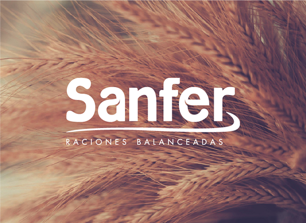 logo,Logo Design,sanfer,Agro,cow,seeds,Rice,wheat,brown,blue,countryside,uruguay,Nature,country,stationary
