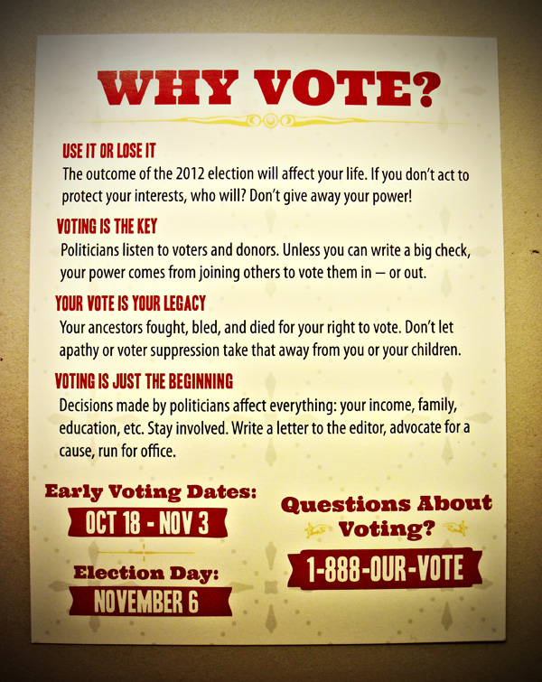 the importance of voting The importance of voting to democracy by ben brewster the importance of voting to democracy voting isn't just important to democracy voting is democracy you can't.
