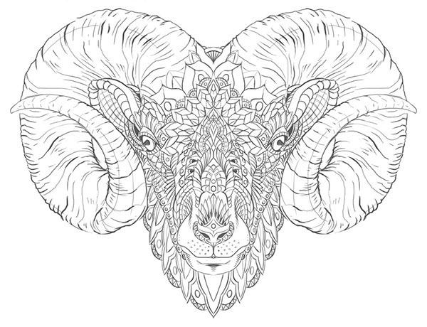 Ram Head Tattoo Design on Behance