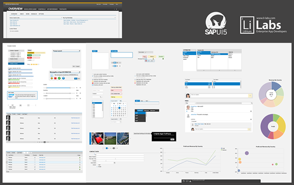 SAP UI5 PSD on Behance