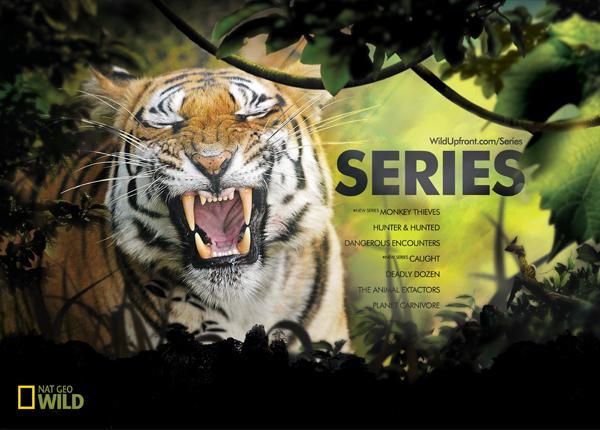 National Geographic Wild Logo National Geographic Wild