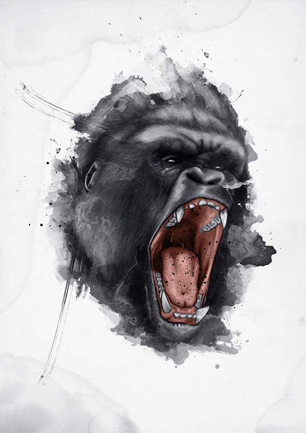 angry gorilla head drawing - photo #27