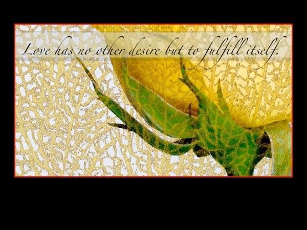 book design Quotes sayings aphorisms
