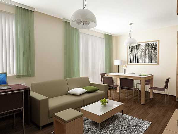 Home Interior Design 09 One Bedroom Apartment on Behance