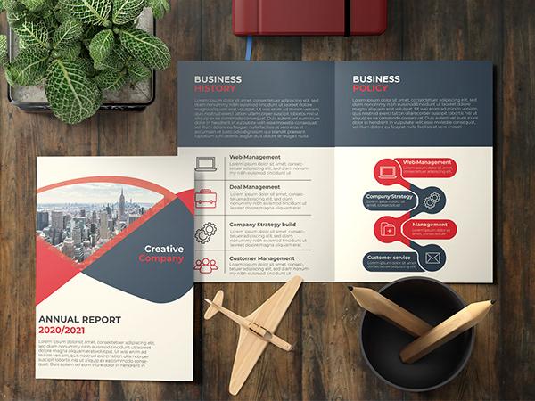 Annual Report Bi-fold Brochure