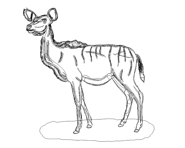 Kudu Female illustration on Behance
