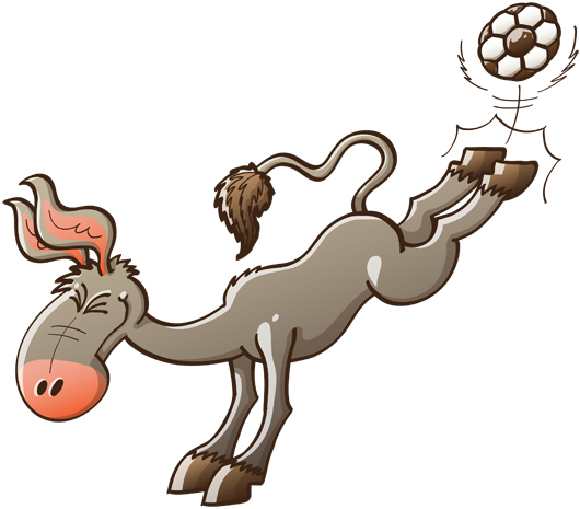 Powerful donkey kicking a soccer ball with its hind legs