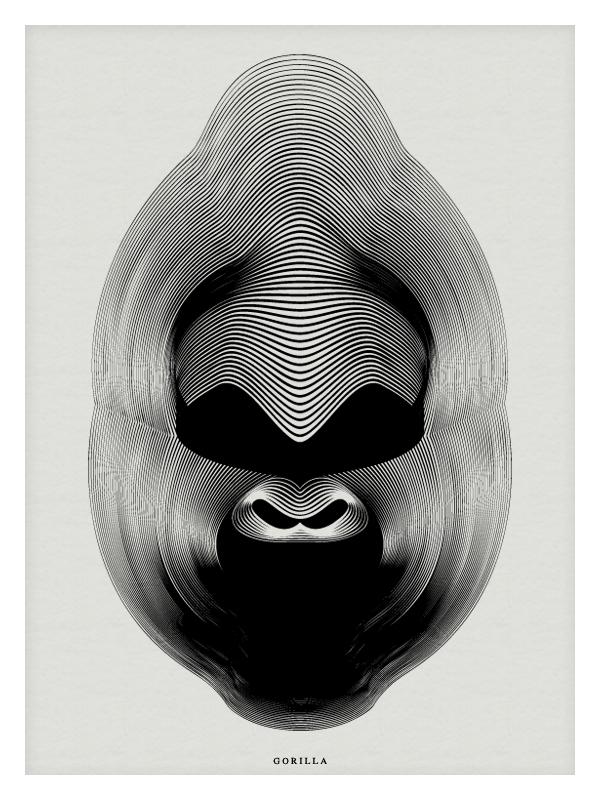 Adobe Portfolio cobra gorilla peacock moire puma bat owl Illustrator minimal blending