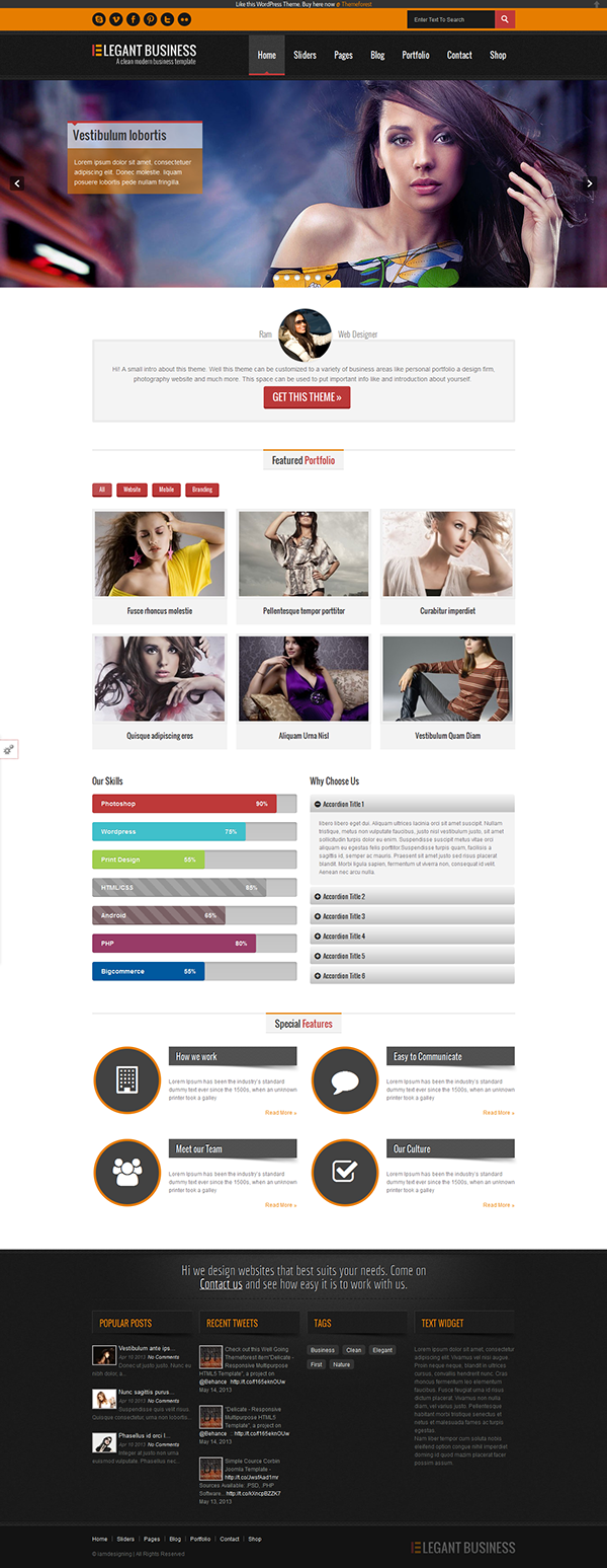 Elegant - Responsive Business, Portfolio Theme