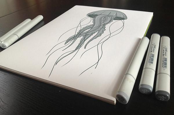 medusa,jellyfish,pelagia,pelagia noctiluca,Enzo Benedetto,fish,sea,mare