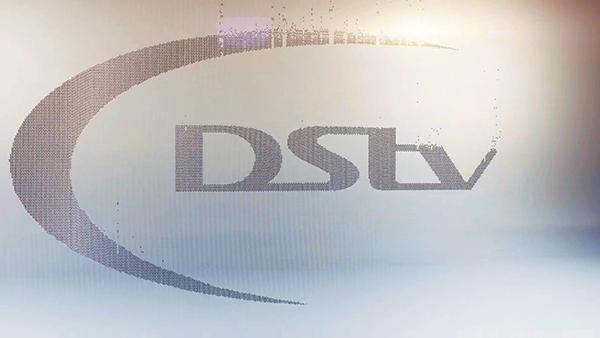 DStv studio zoo  design  indaba design indaba beads logo Ident