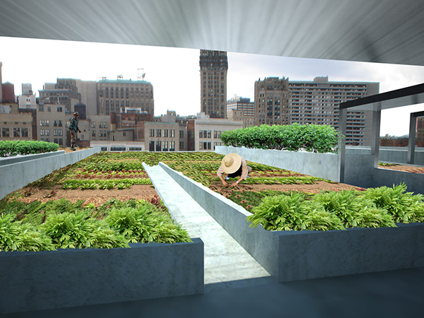 Detroit Center for Urban Agriculture and Seed Bank on Behance
