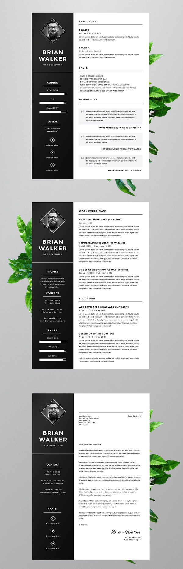 free resume template for word  photoshop  u0026 illustrator on pantone canvas gallery