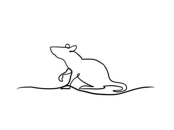 animal, Animal illustration,single line drawing,line drawing,vet illustration, Illustration,david hallangen